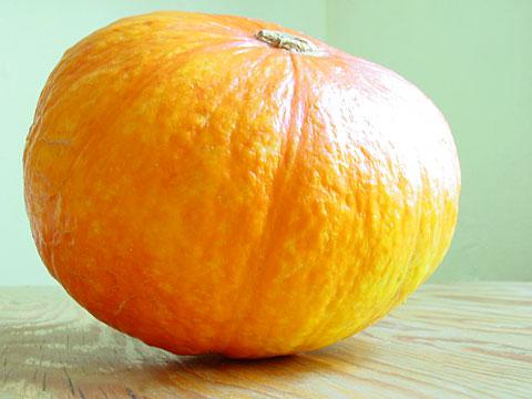 Pumpkin on turquoise