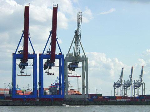 Giraffes in the harbor
