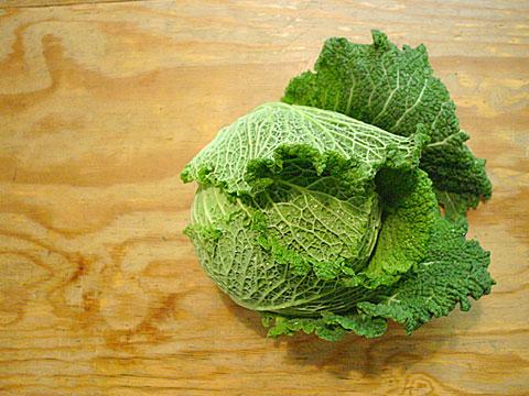 Savoy Cabbage 02