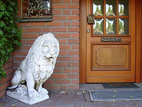 Watching Lion 05