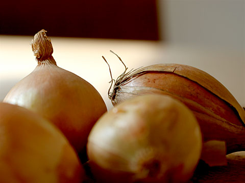 Onions 04