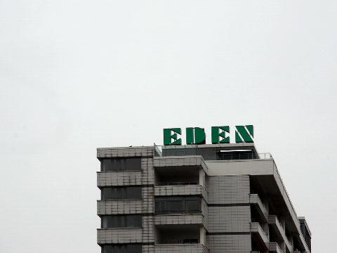 Grey Eden