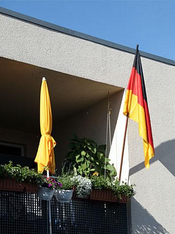 Flag Parade I