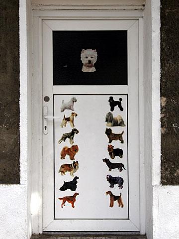 Dog parlor
