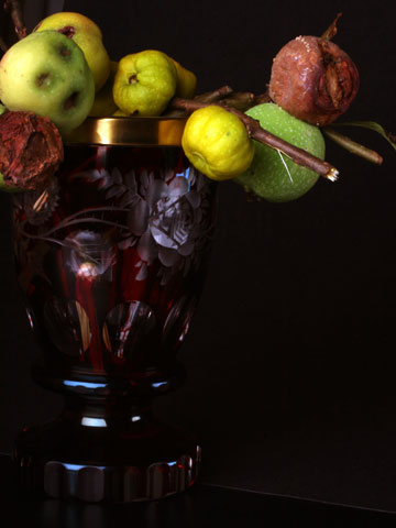 Red Goblet with Fruits