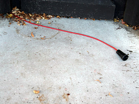 Autumnal cable