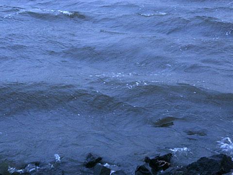 Blue Water 01
