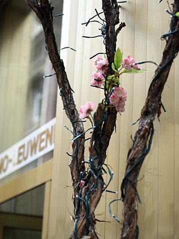 Fake Blossoms
