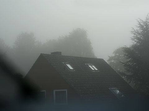 Fog in the Morning 02