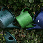 still life: watering cans