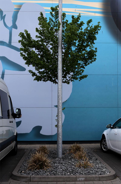 Center Tree